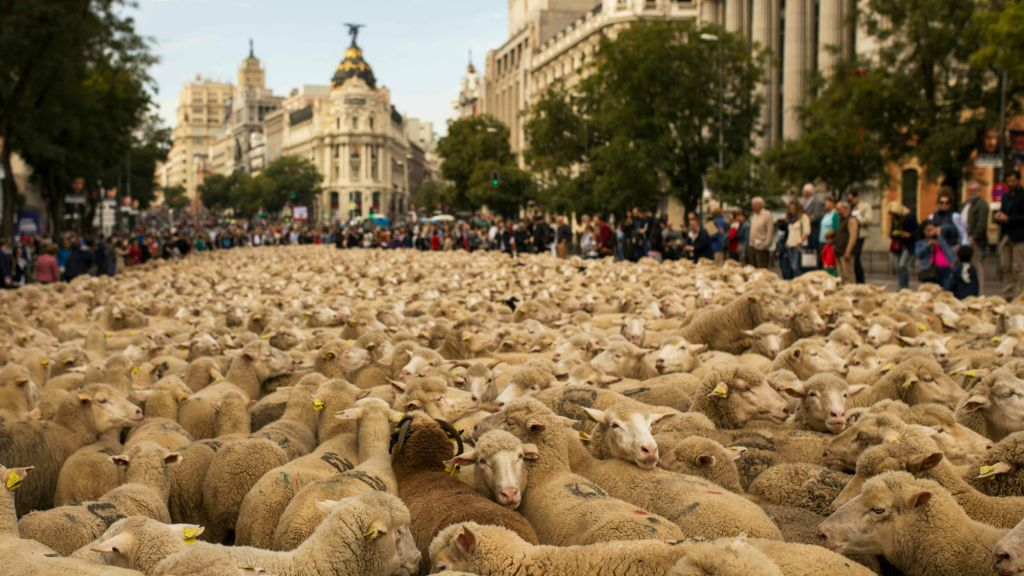 """The LONG Divorce 