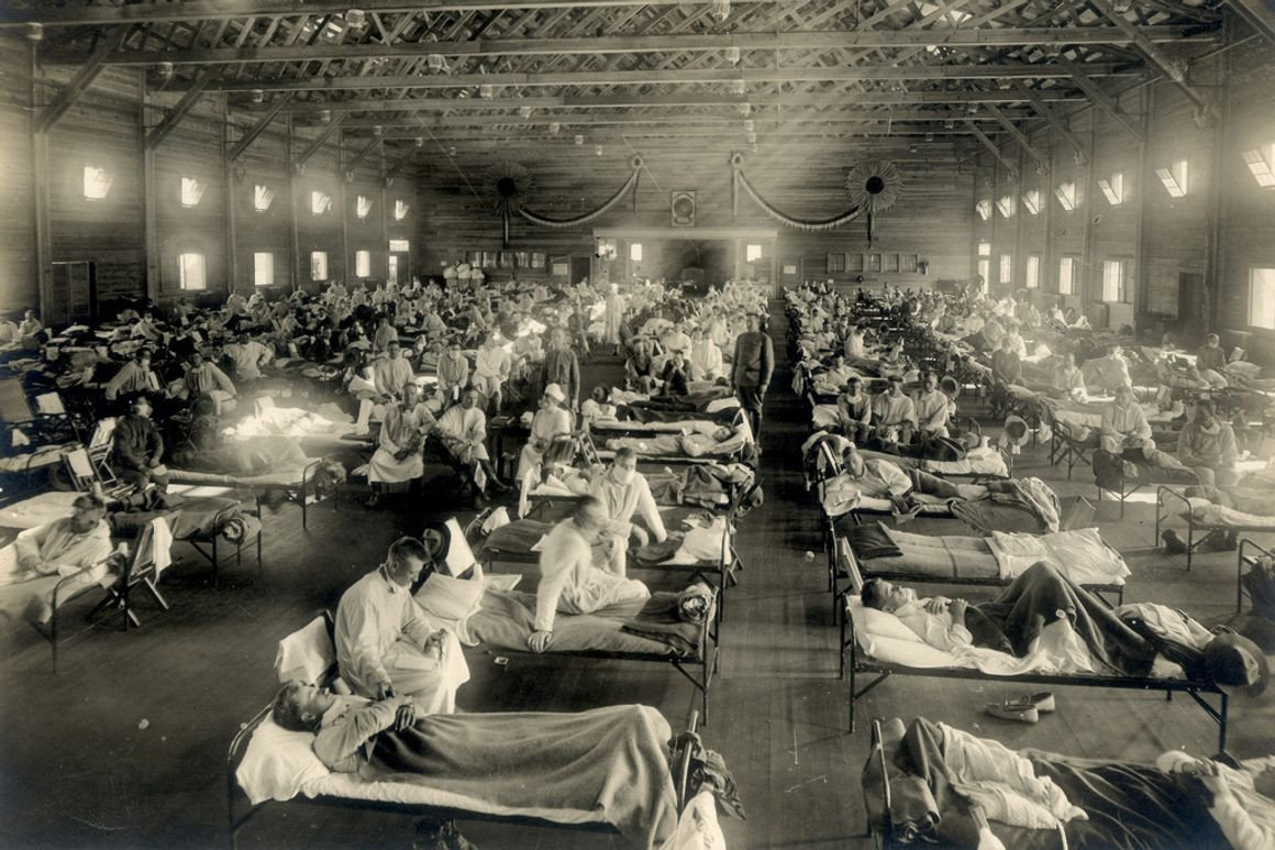 Germ Theory Is a Hoax (and You've Been Lied To About the Spanish Flu)