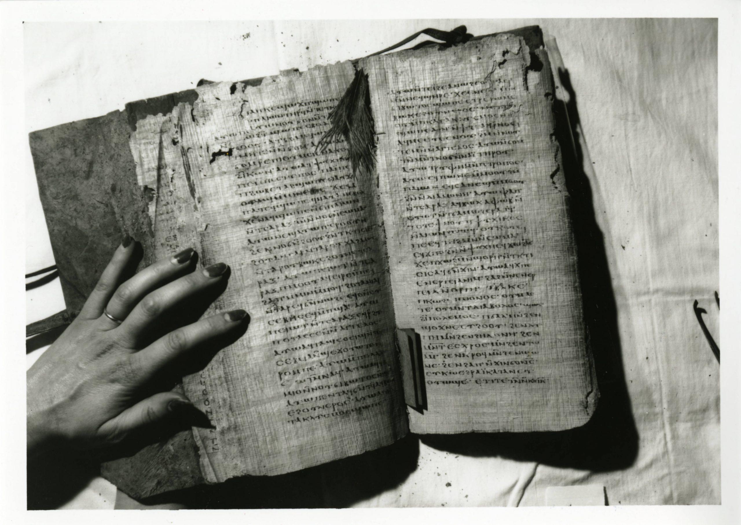 Esoteric Encyclopedia: The Nag Hammadi Library - Evolve + Ascend