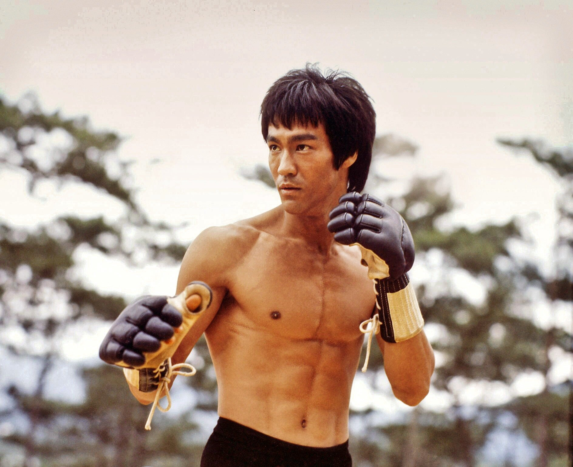 Imagine Bruce Lee being interviewed by Johnny Carson and doing kung fu with Elvis | by Jeremy Roberts | Medium