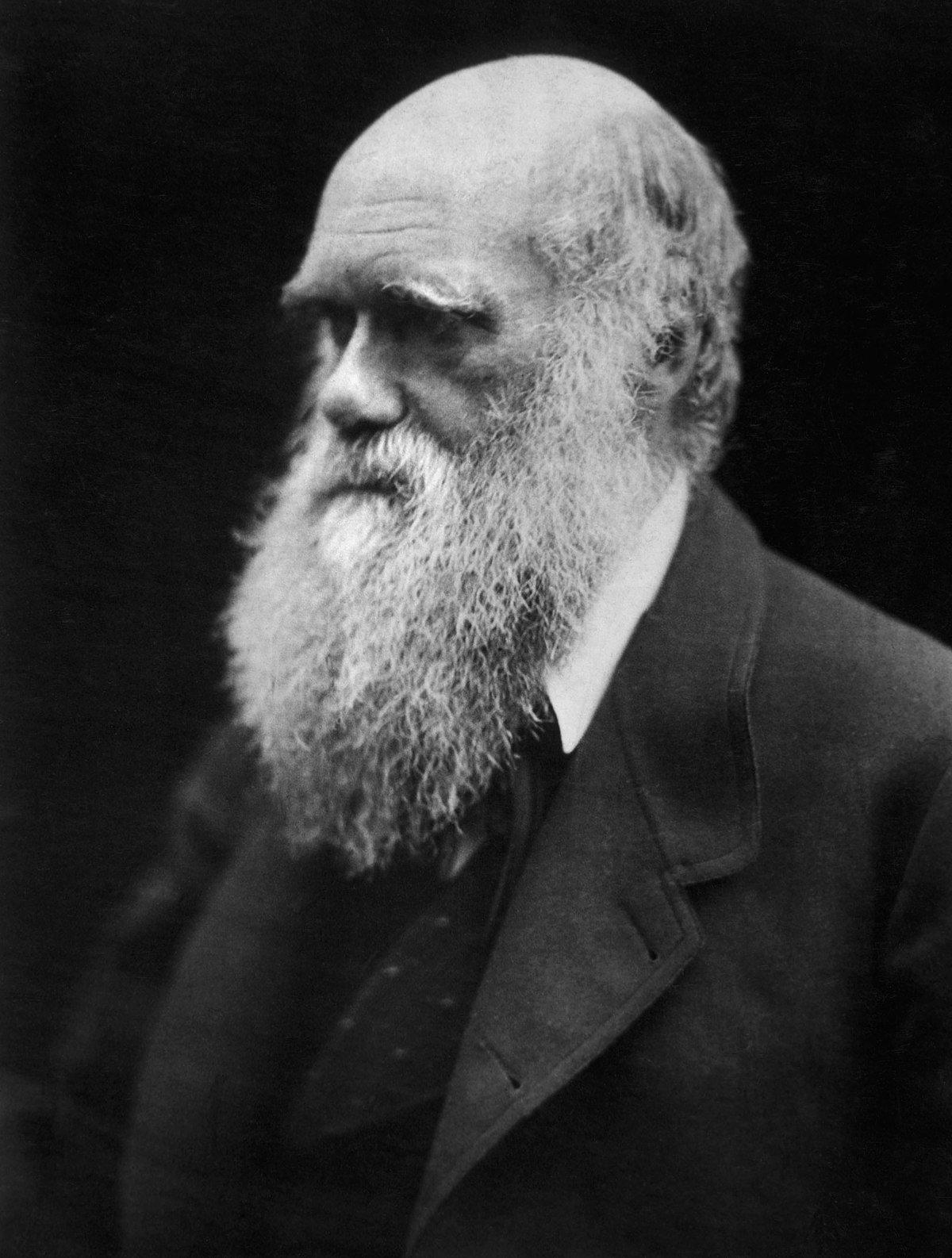 Darwin Day - Wikipedia