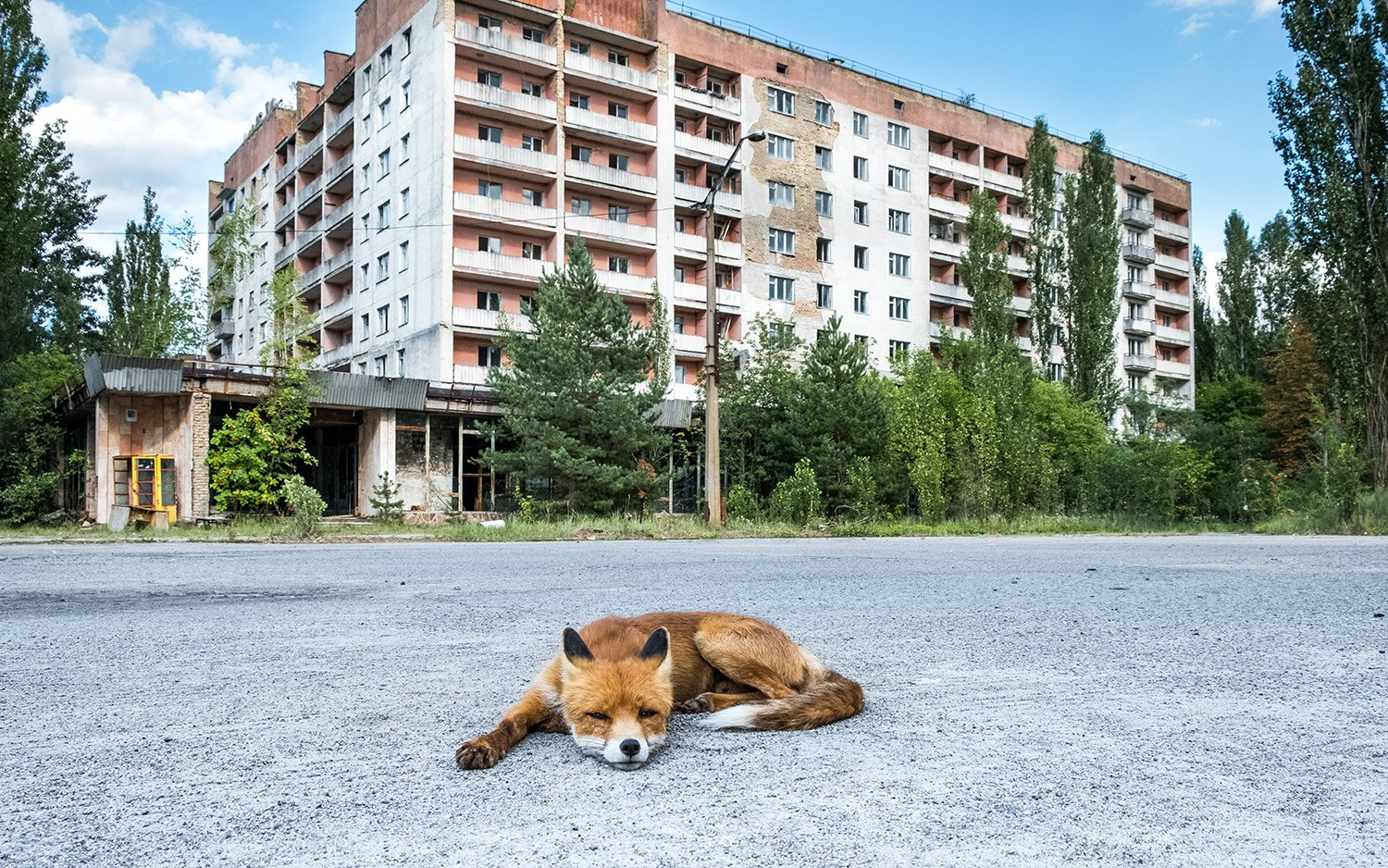 Is It Safe to Visit Chernobyl? | Live Science