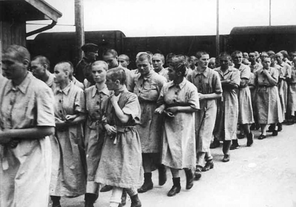 This image shows female prisoners in Auschwitz who were deemed suitable for work but did not work in the brothel.Non-Jewish women were lured into volunteering with promises of better living conditions and better food rations