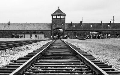 The Truth About Auschwitz II